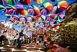 Đà Lạt Rực Rỡ Trước Ngày Khai Mạc Festival Hoa