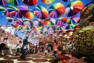 Lễ hội hoa Đà Lạt lần thứ 8 bao giờ sẽ được tổ chức