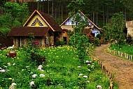 Thiên đường lạc lối giữa những khu vườn cổ tích ở Đà Lạt