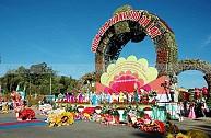 Tour Du Lịch Đà Lạt Tết Dương Lịch 3N2D Từ TP. Hồ Chí Minh